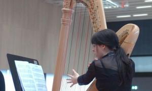 0054 –  7e Fête des Musiques en Veveyse 2010